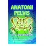 Buku Anatomi Pelvis