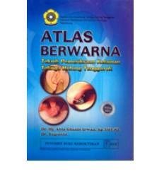 Atlas Berwarna Teknik Pemeriksaan Kelainan Telinga Hidung Tenggorok